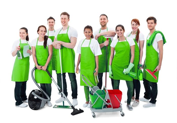 Top-cleaning-Groene-Hart